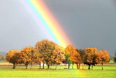 Ff15 Am Ende Des Regenbogens