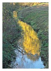 Gold im Fluss