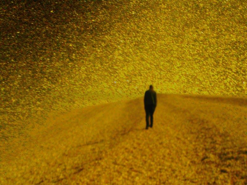 Golden dreams 8