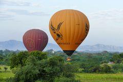 ...Golden Eagle über Bagan...