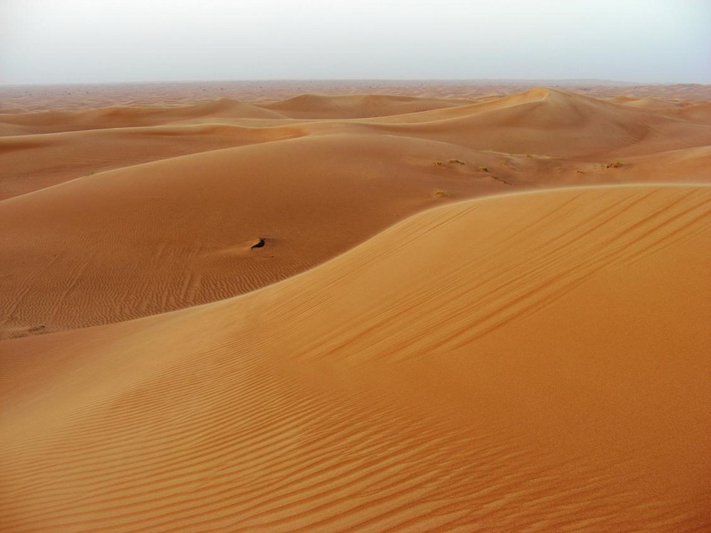 Golden Sands in Dubai