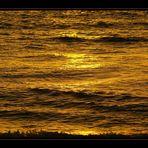 golden wave [1]