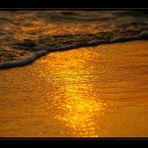 golden wave [5]