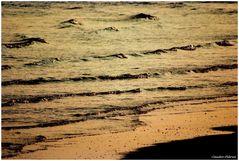 Golden waves at sunset