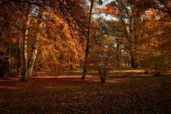 goldender Herbst