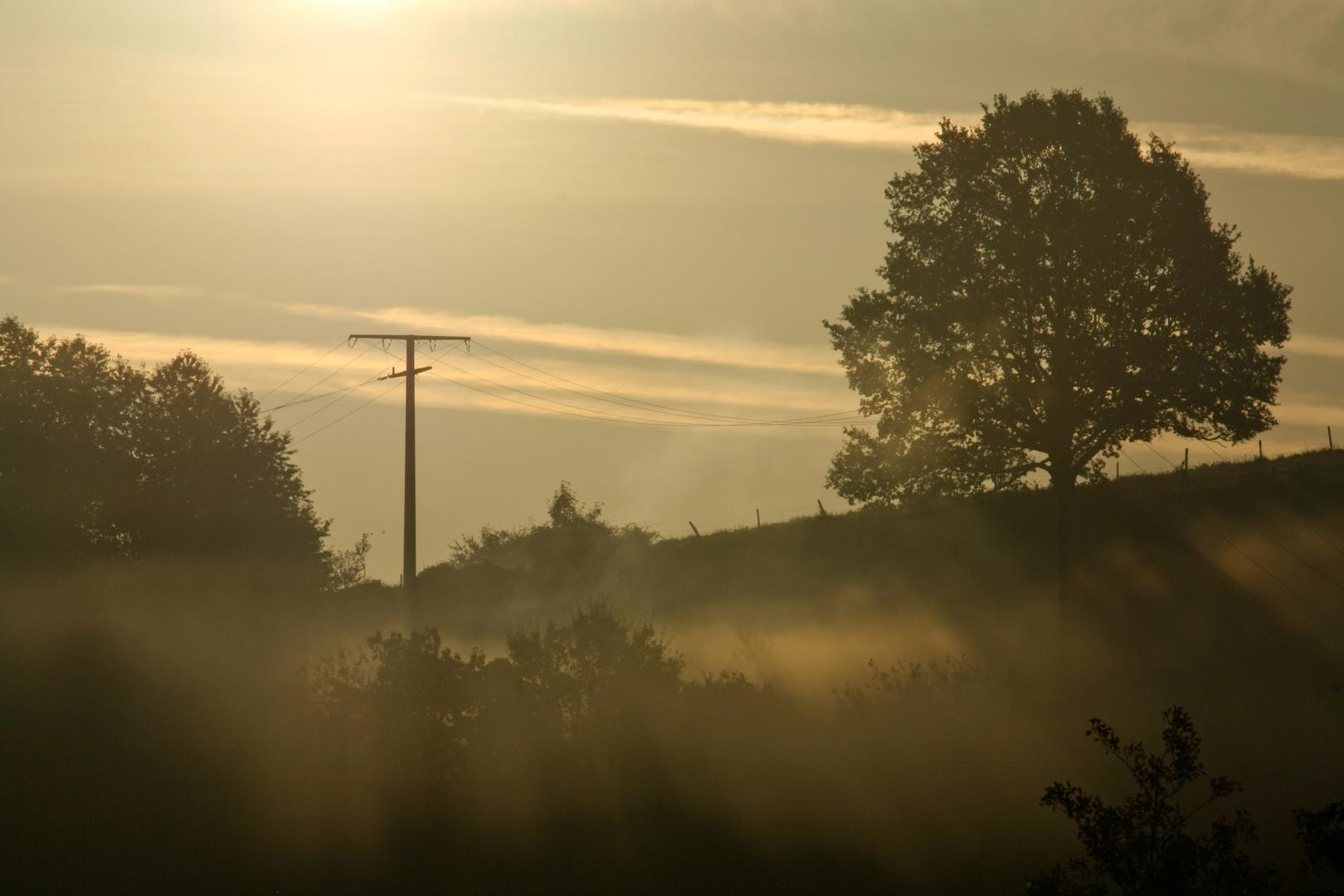 Goldene Landschaft