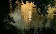 goldene regnitz - von der sonne wach geküsst