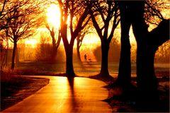 Goldene Straße...