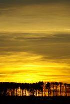 Goldener Abend