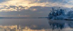 goldener Greifensee