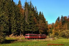 Goldener Herbst 2...