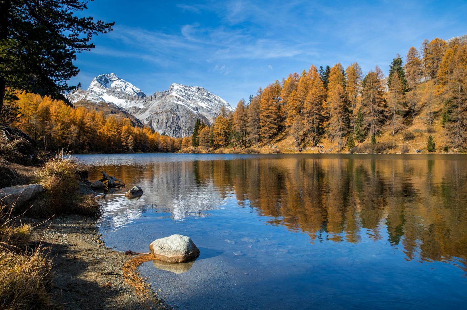 Goldener Herbst am Lai da Palpuogna