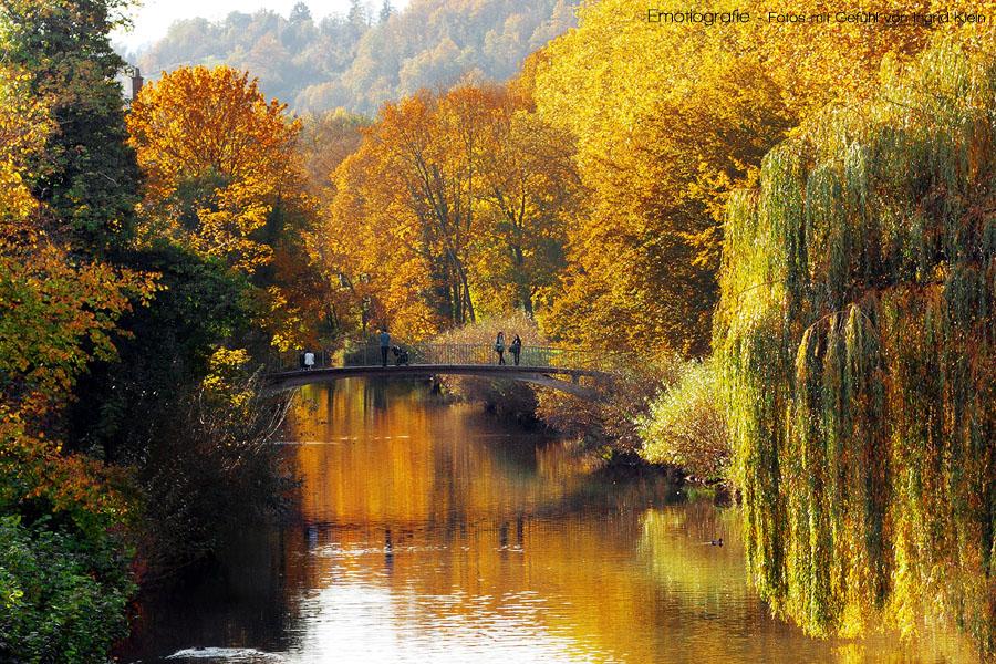 Goldener Herbst am Neckar