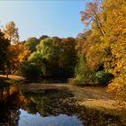 Goldener Herbst am Niederrhein