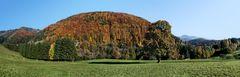 Goldener Herbst auf der Kehr!