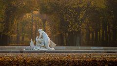 goldener herbst im park