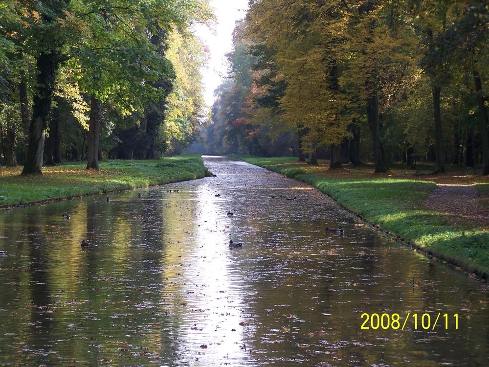 Goldener Herbst im Park Schönbusch (3)