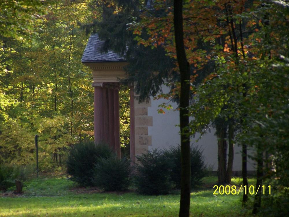 Goldener Herbst im Park Schönbusch (5)