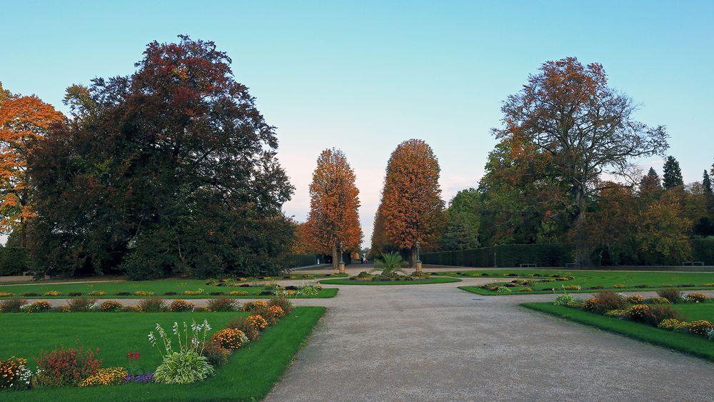 Goldener Herbst im Pillnitzer Schlosspark und...