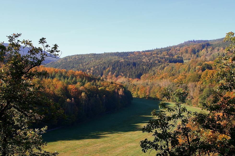 Goldener Herbst im Thüringer Wald