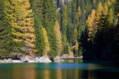 Goldener Herbst in Graubünden