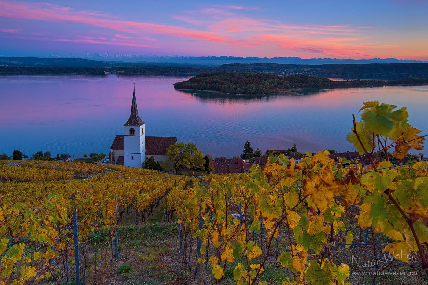 Goldener Herbst in Ligerz