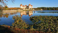Goldener Herbst in Moritzburg auch beim Schloss...