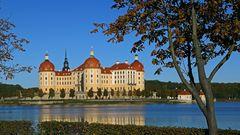 Goldener Herbst in Moritzburg wie es besser gar nicht sein kann...