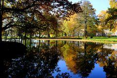 Goldener Herbst in unserem Schulpark