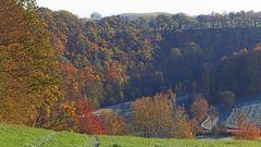 Goldener Herbst letzten Sonntag bei der Auffahrt aus dem Müglitztal...