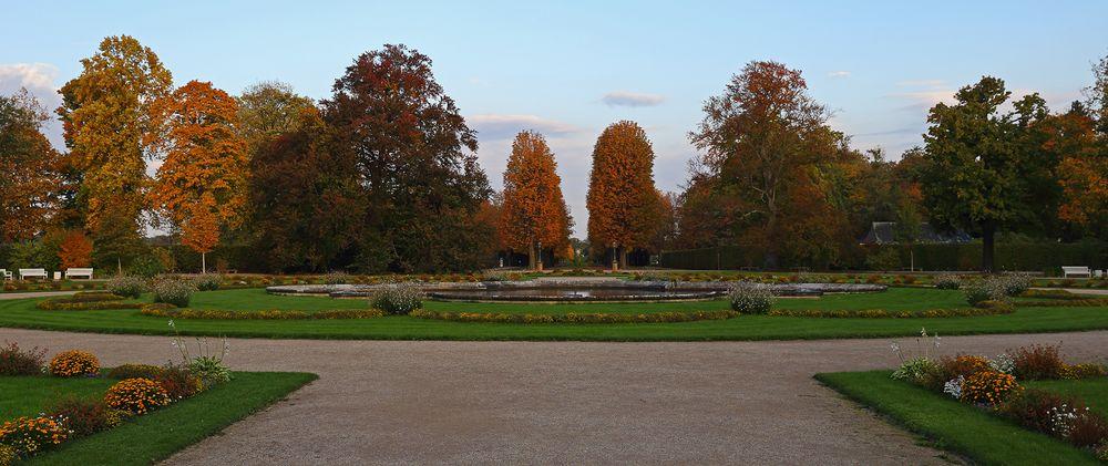 Goldener Herbst vom Feinsten auch im Schlosspark Pillnitz