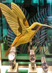 Goldener Kolibri