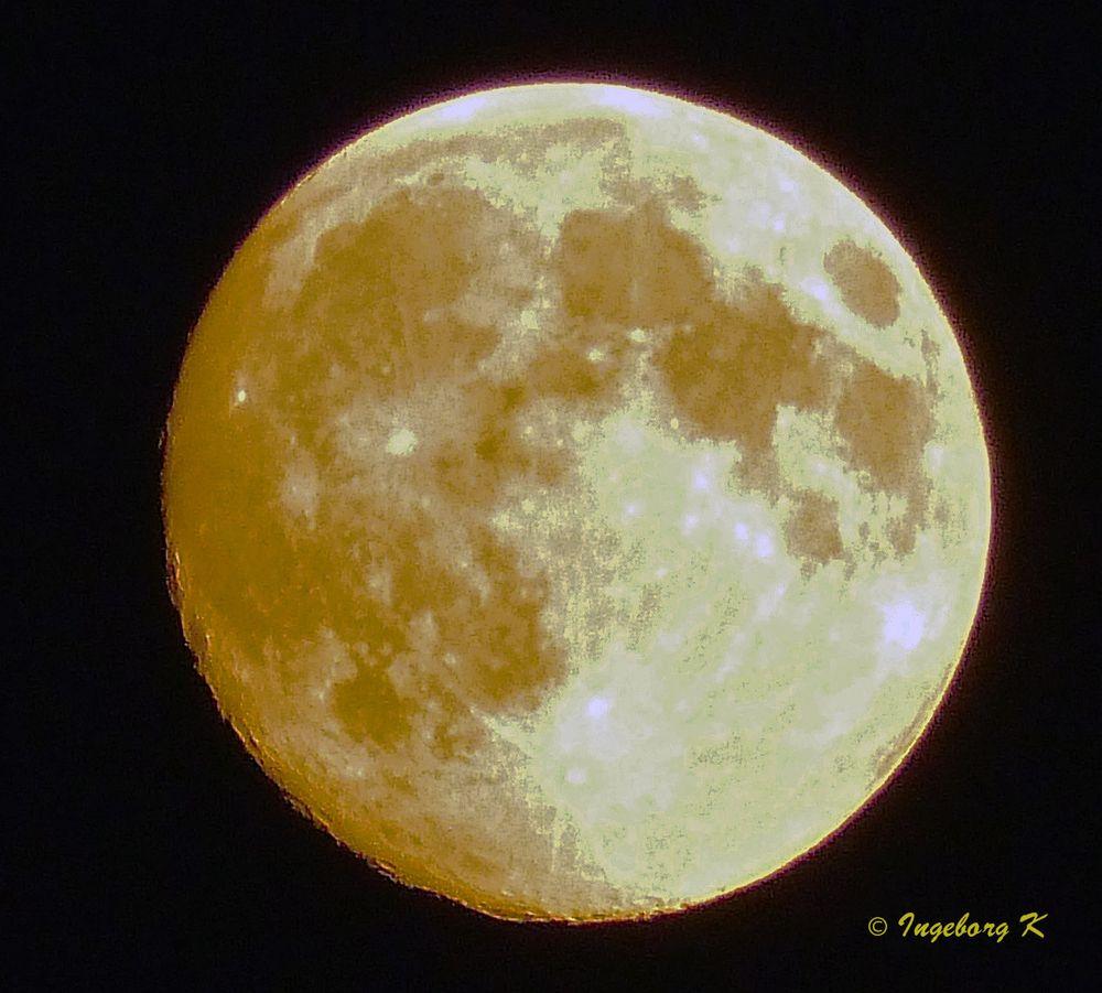 Goldener Mond am 15.9.2016 um 0,10 Uhr über meinem Garten