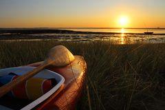 ~ Goldener Morgen ~