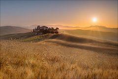 Goldener Morgen...