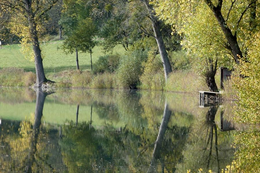 Goldener Oktober am Meerfelder Maar/Eifel