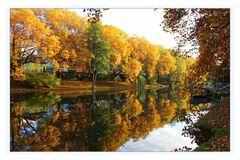 Goldener Oktober am Neckar in Heilbronn