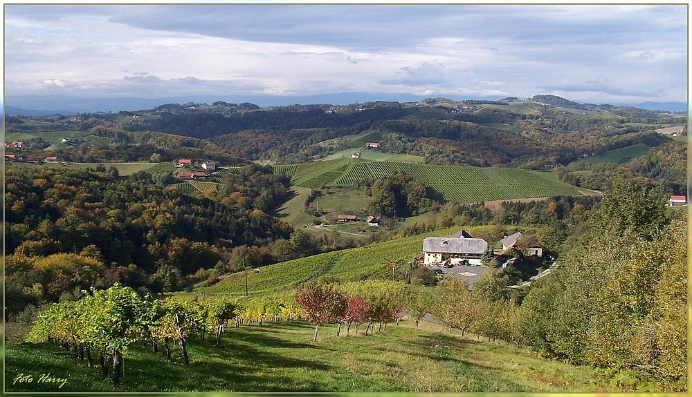 Goldener Oktober an der südsteirischen Weinstrasse.