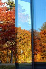 Goldener Oktober gespiegelt