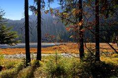 ... goldener Oktober (mit Flares) ...
