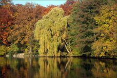 Goldener Oktober # Octubre dorado