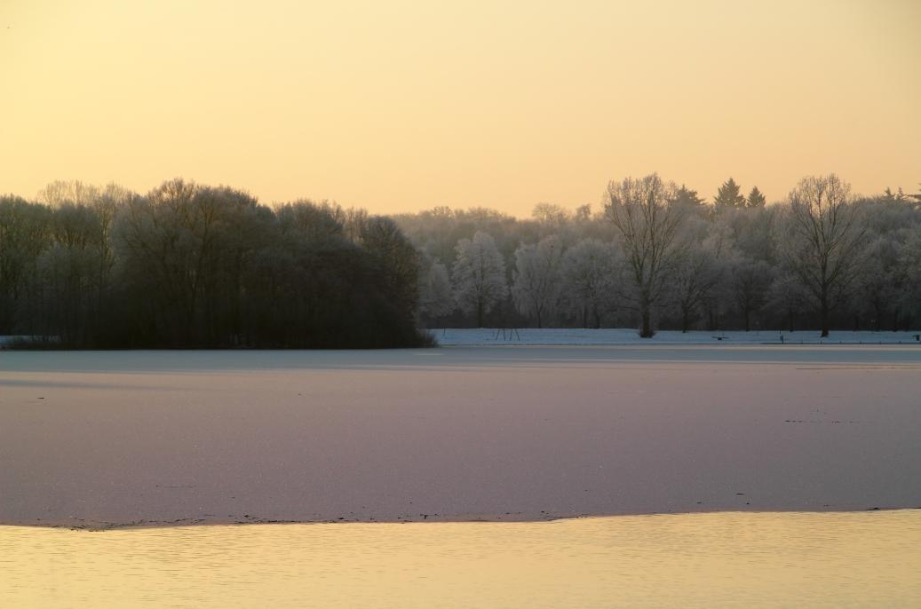 Goldener Winter Unisee Bremen