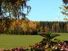 """goldener""Herbst"