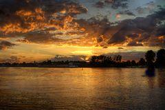 Goldenes Licht am Rhein