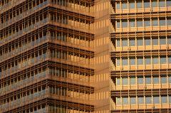 Goldfenster