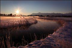 ~ Goldiger Wintermorgen III ~