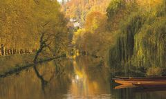 Goldrausch am Neckar