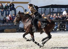 Golega 2010 , Lady im Speed Trail