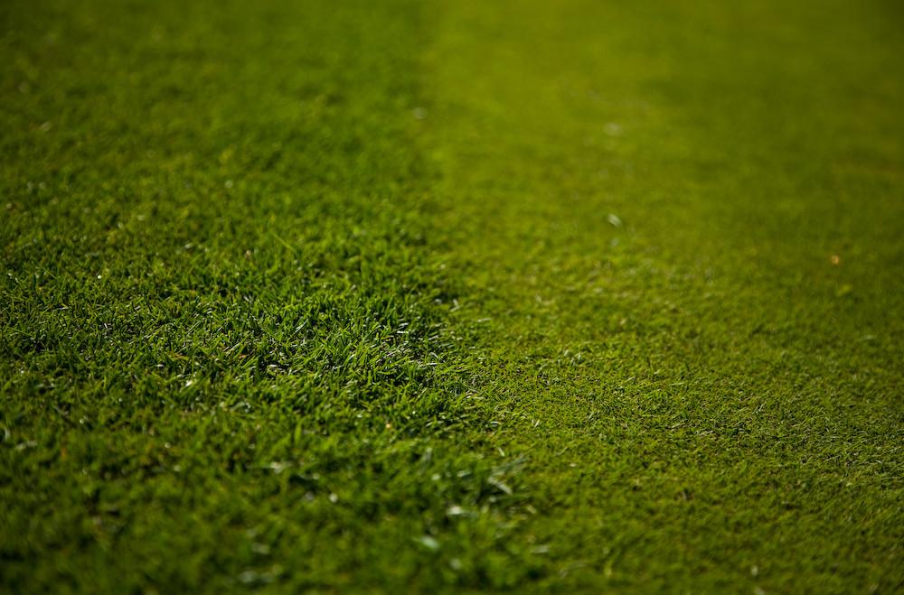 Golf Series II