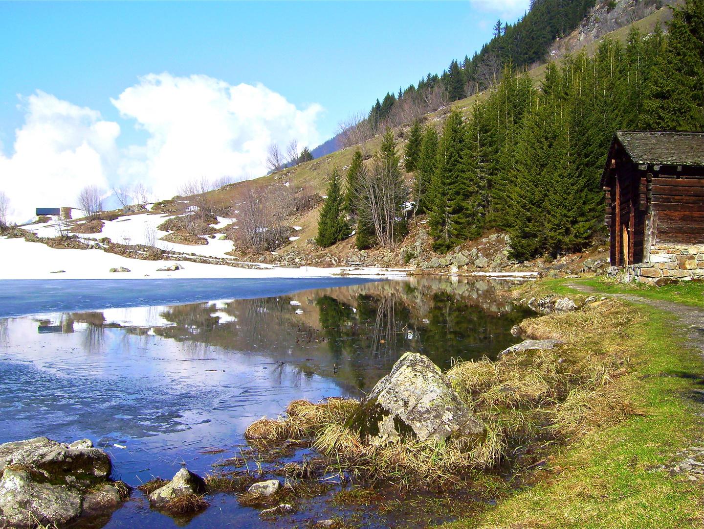 Golzernsee im Frühling, Bristen